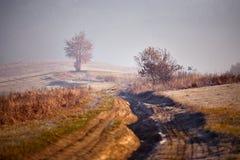 在喀尔巴阡山脉的11月有薄雾的晴朗的早晨 免版税图库摄影