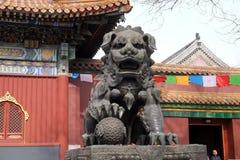 在喇嘛寺庙门的古铜色皇家狮子在北京 库存照片