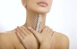 在喉头的一根骨头,困住在喉头(不能呼吸) 免版税库存照片