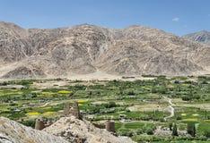 在喜马拉雅山中的绿色村庄 免版税图库摄影