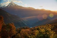 在喜马拉雅山,尼泊尔的安纳布尔纳峰山脉的日出 免版税库存图片