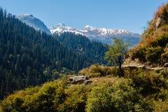 在喜马拉雅山coverd的谷与森林在阳光下 图库摄影