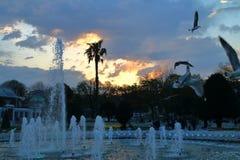 在喷泉的晚上在伊斯坦布尔正方形  免版税库存照片