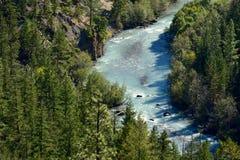 在喷泉谷,不列颠哥伦比亚省加拿大01附近的桥梁河 库存图片