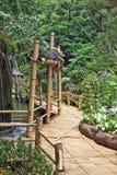 在喷泉附近的竹道路 库存照片