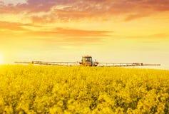 在喷洒油菜子农田的拖拉机 免版税库存照片