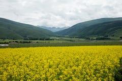 在四川高速公路的风景在中国 免版税库存图片