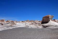 在园地de彼德拉Pomez, Catamarca,阿根廷的浮岩 库存图片