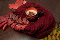 在围巾包裹的杯子的热的咖啡 库存图片