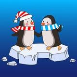 在围巾和一个帽子的两只动画片企鹅在冰川 库存图片