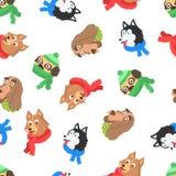 在围巾的无缝的样式狗圣诞快乐的 皇族释放例证