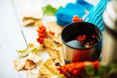 在围巾的绿色圈子,与槭树叶子的在雨以后的窗口和下落秋天/季节,当您需要温暖的饮料时 图库摄影