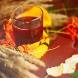 在围巾的绿色圈子,与槭树叶子的在雨以后的窗口和下落秋天/季节,当您需要温暖的饮料时 免版税库存照片