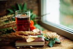在围巾的绿色圈子,与槭树叶子的在雨以后的窗口和下落秋天/季节,当您需要温暖的饮料时 免版税库存图片
