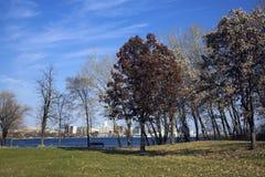在国会大厦湖被看见的monona间威斯康辛 免版税库存照片