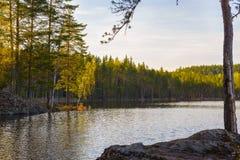 在国家公园的日落 图库摄影