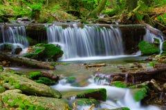 在国家公园Sumava捷克共和国的瀑布 免版税库存照片