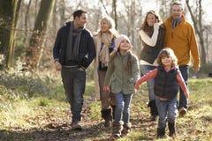 在国家步行的3一代家庭在冬天 免版税库存照片