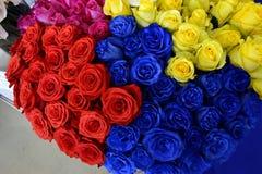 在国际花的不同的色的玫瑰 免版税库存图片