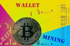在图和黄色蓝色霓虹背景的硬币cryptocurrency BTC 皇族释放例证