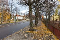在图尔库的郊区街道秋天颜色的 库存图片