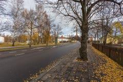 在图尔库的郊区街道秋天颜色的 图库摄影
