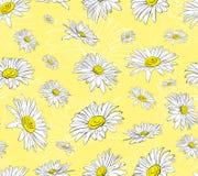 在图表的春黄菊样式 皇族释放例证