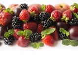 在图象边界的黑和红色食物与拷贝空间的文本的 成熟黑莓、草莓、李子和桃子在白色backgr 库存照片