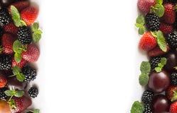 在图象边界的黑和红色食物与拷贝空间的文本的 成熟黑莓、草莓、李子和桃子在白色backgr 图库摄影