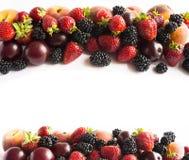 在图象边界的黑和红色食物与拷贝空间的文本的 成熟黑莓、草莓、李子和桃子在白色backgr 免版税库存图片