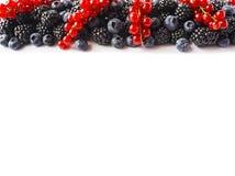 在图象边界的黑蓝色和红色食物与拷贝空间的文本的 成熟蓝莓、黑莓和红浆果在白色bac 库存图片