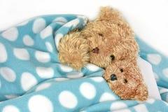 在圆点毯子下的玩具熊 免版税图库摄影