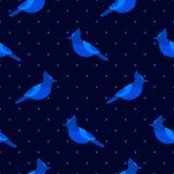 在圆点的无缝的样式与蓝色尖嘴鸟 纺织品和包裹的装饰品 库存图片