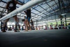 在圆环的训练泰国拳击在健身房 库存图片
