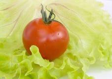 在圆白菜叶子的红色蕃茄  库存图片