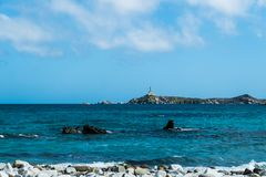 在圆白菜海岛,卡利亚里,撒丁岛,意大利上的灯塔 免版税库存照片