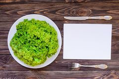 在圆的板材的顶视图新鲜的绿色莴苣服务与利器 免版税库存图片