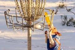 在圆盘高尔夫球操场的对峙状态艰难的情况 库存图片