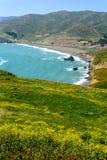 在圈地小海湾海滩,加利福尼亚,美国的视图 免版税图库摄影