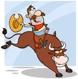 在圈地的牛仔骑马公牛 免版税库存图片