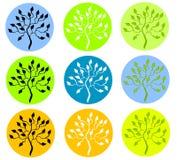 在圈子图标的五颜六色的结构树 图库摄影