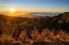 在土井Inthanon国家公园的日出在清迈, Thail 图库摄影