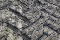 在土土壤纹理的干燥轮子轨道 免版税图库摄影