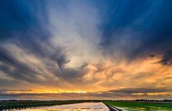 在土地的暮色时间为种植在米领域做准备 免版税库存照片