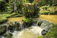 在土地Nostra Parque,亚速尔群岛海岛的热的小河 葡萄牙 库存图片
