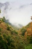 在土坎的雾 图库摄影