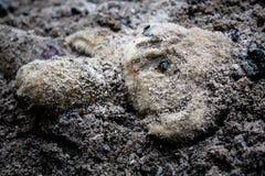 在土埋没的被放弃的玩具熊玩具 免版税库存图片