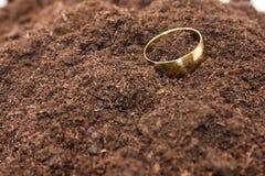 在土壤地面droped的金黄圆环 免版税库存照片