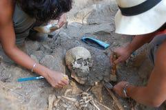 在土壤的真正的人的头骨 图库摄影
