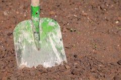 在土壤的铁锹在庭院里 库存照片